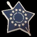 Betsy Ross Sterling Pin / Pendant