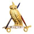 NLAPW Medium Owl With Diamond Eyes