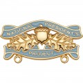 National President Project Pin