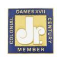 CDXVII Junior Member