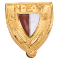 NSNEW Recognition Pin