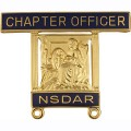 14K Chapter Officer Pin