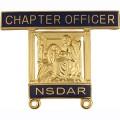 14K Chapter Officer Pin