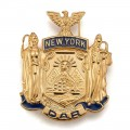 NY State Pin